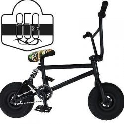 Ride 858 Mini BMX Freestyle Bike – With 3pce Crank & Spring Accessories, Fat Tires For Pro T ...