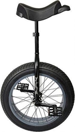 Sun XL Unicycle 20″ x 4-1/4″ Black