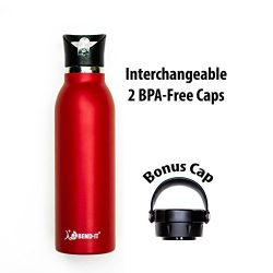 Bend It Sport Thermos Vacuum Insulated Double Walled Stainless Steel Water Bottle, 2 BPA Free Sc ...