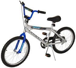 Titan Tomcat Boys BMX with 20 Wheel, Silver and Blue, with Coaster Brake