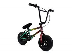 FatBoy Mini BMX Bicycle Freestyle Bike Fat Tires, Rasta Assault