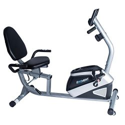 EFITMENT Magnetic Recumbent Bike Exercise Bike with High Weight Capacity, Easy Adjustable Seat,  ...