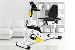 JOROTO Smart Indoor Recumbent Exercise Bike, MH20 Cardio Fitness Cycling Machine Home Stationary ...