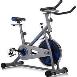 Merax Indoor Cycling Bike Cycle Trainer Exercise Bicycle (Gray&.Blue)