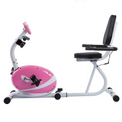 Sunny Health & Fitness Magnetic Recumbent Bike Exercise Bike, 220lb Capacity, Monitor, Pulse ...