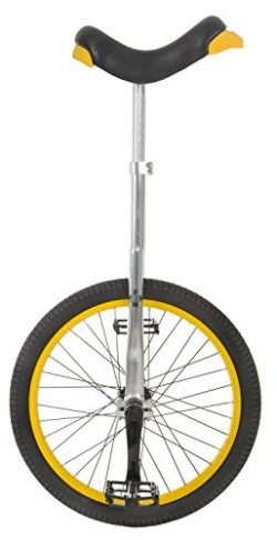 Fun 20 Inch Wheel Pro Aluminum Chrome Unicycle